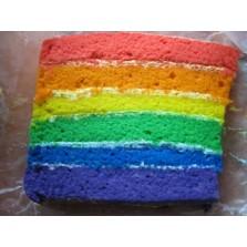 Regenboog taart  1 liber  28 cm